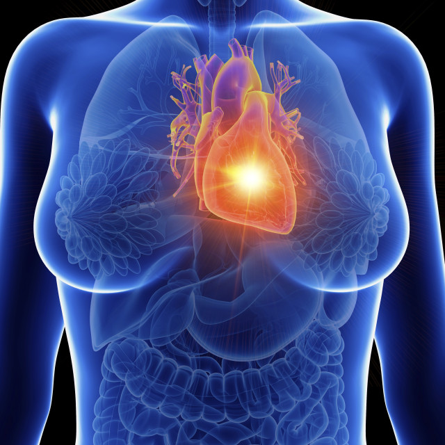 """""""Illustration of a woman's inflamed heart"""" stock image"""