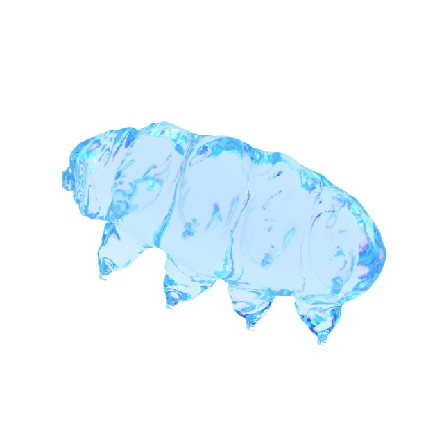 """Illustration of a water bear"" stock image"