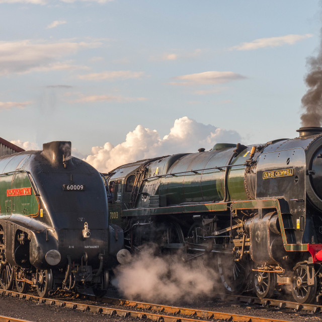 """""""Oliver Cromwell and Union of South Africa"""" stock image"""