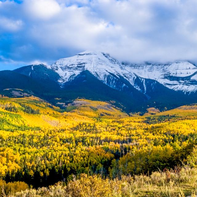 """Colorado in Autumn"" stock image"