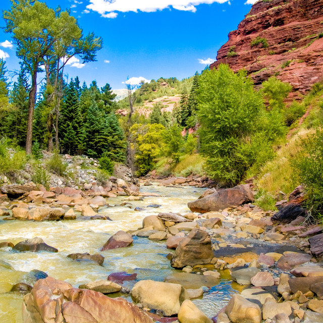 """""""Uncompaghre River"""" stock image"""