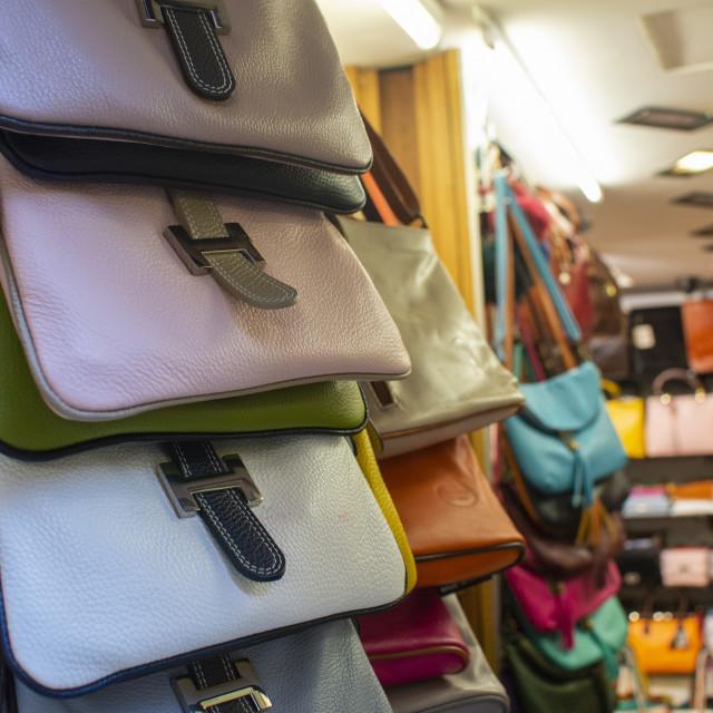 """handbag from traditional Italian leather"" stock image"