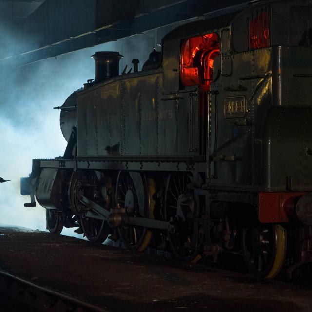 """Preparing the Locomotive"" stock image"