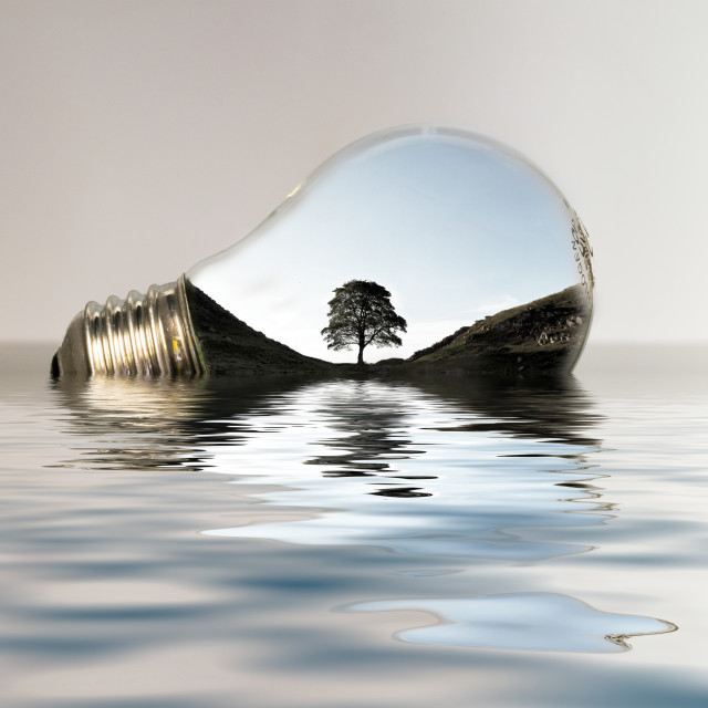"""Captured in Glass - Sycamore Gap"" stock image"
