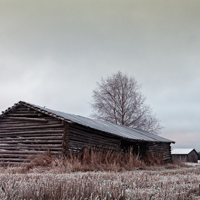 """""""Old Barn Houses On The Frosty Fields"""" stock image"""