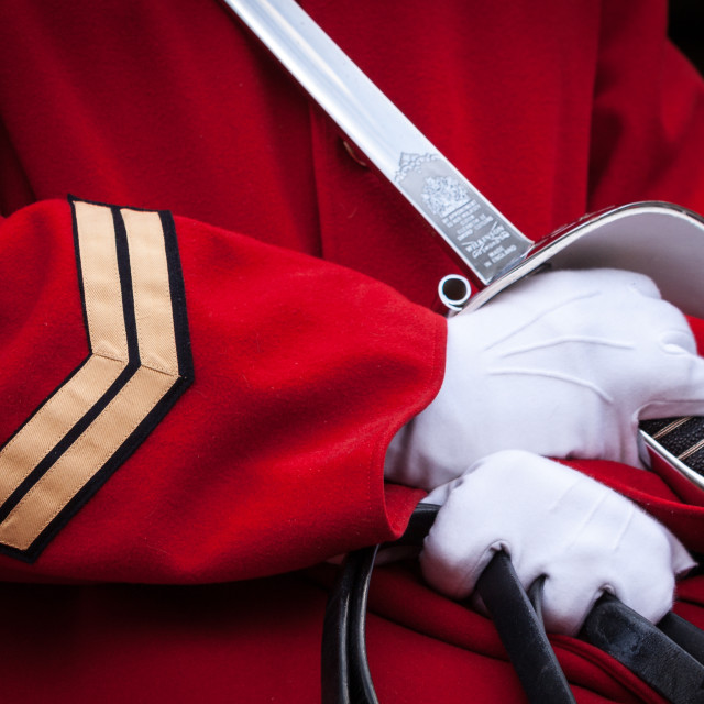 """Close up of a mounted soldier, Horseguards, London, UK"" stock image"