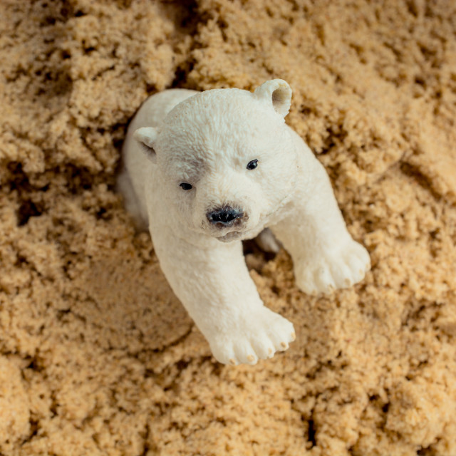 """Polar bear model on sand"" stock image"