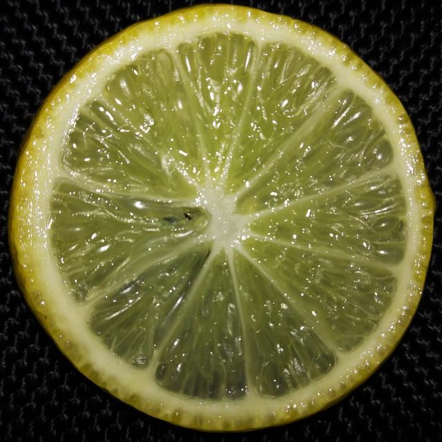 """lemon"" stock image"