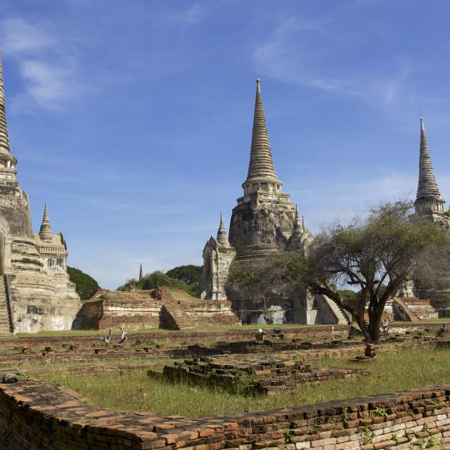 """UNESCO world Heritage site - Wat Mahathat, Ayutthaya, Thailand"" stock image"