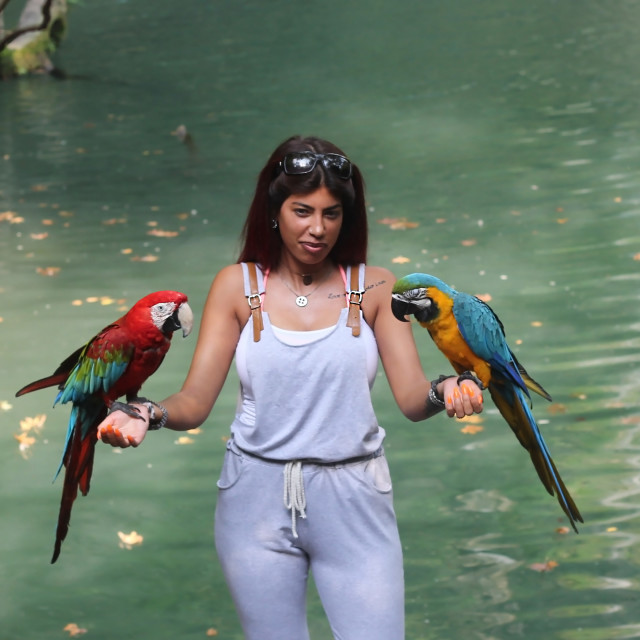 """""""A Young Lady with Parrots Turkey"""" stock image"""
