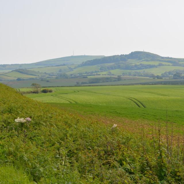 """English Countryside and Farmland"" stock image"
