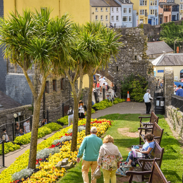 """""""People in a small garden in Tenby, West Wales."""" stock image"""