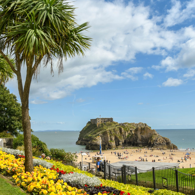 """""""Small garden with flower beds and palm trees in Tenby, West Wales."""" stock image"""