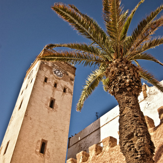 """Essaouira town clock and palm tree"" stock image"