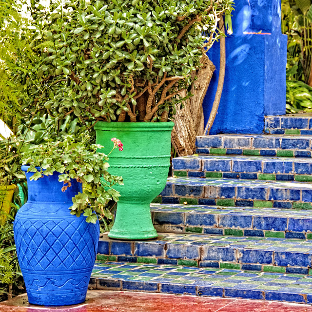 """Jardin Majorelle colours #02 Marrakech"" stock image"
