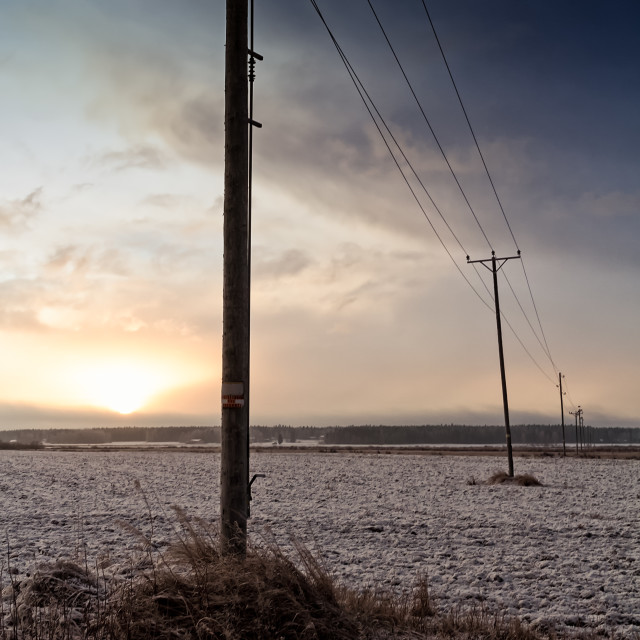 """""""Telephone Lines Crossing The Fields"""" stock image"""