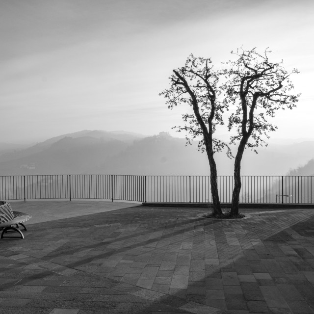 """Langhe winter foggy panorama. Black and white photo"" stock image"