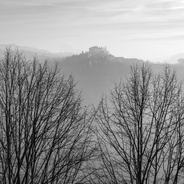 """""""Langhe winter foggy panorama. Black and white photo"""" stock image"""