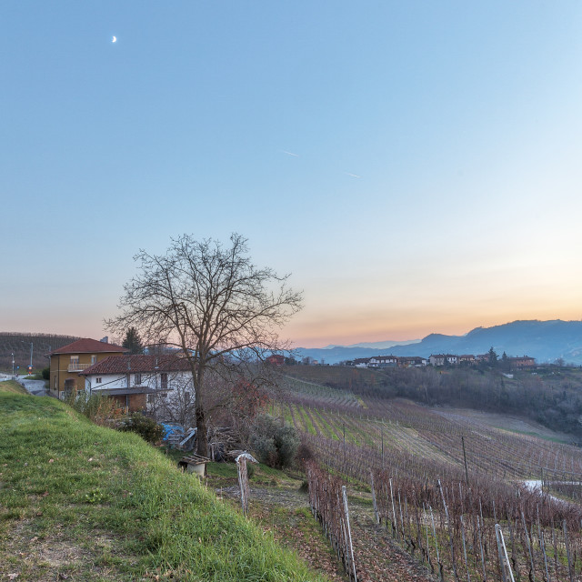 """""""Langhe winter panorama. Color image"""" stock image"""