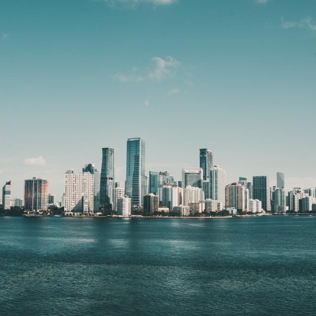 """""""Miami Skyline"""" stock image"""