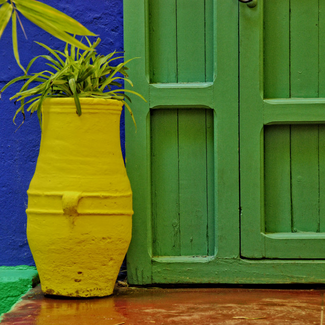 """Jardin Majorelle Colours #04"" stock image"