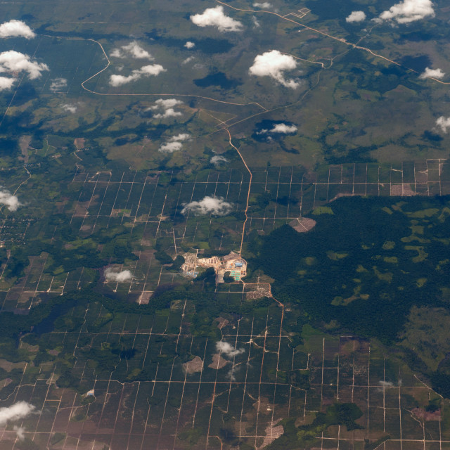 """""""Kalimantan Indonesia Aerial view of the plantations in South Kalimantan."""" stock image"""