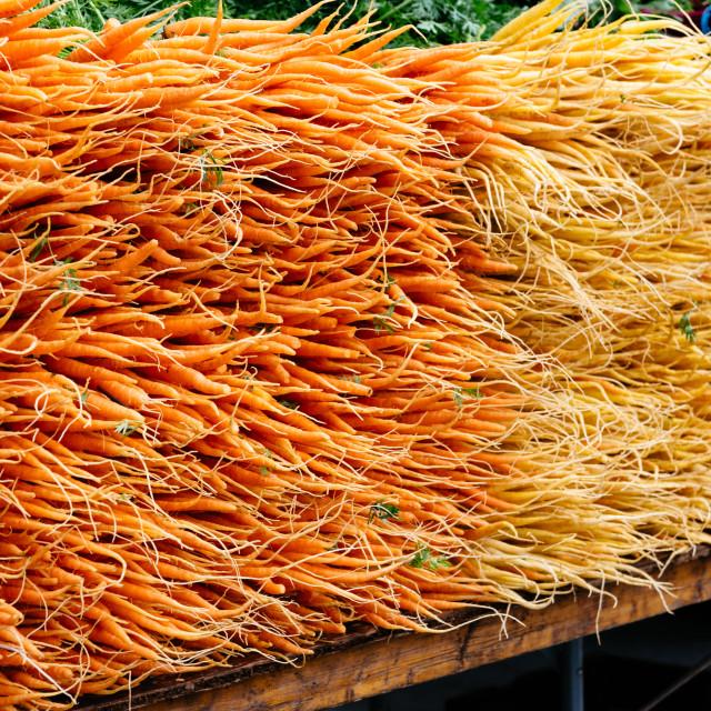 """Orange baby carrots and radish piled in market"" stock image"