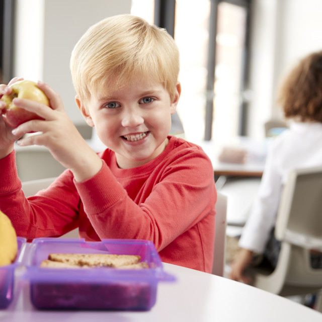 """""""Young white schoolboy sitting at a table smiling and holding an apple in a..."""" stock image"""