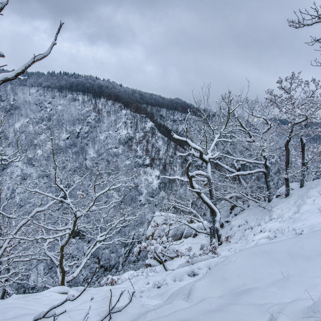 """Snowy Hills Of The Harz Mountains"" stock image"