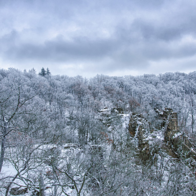 """Dreamy Winter Scene"" stock image"
