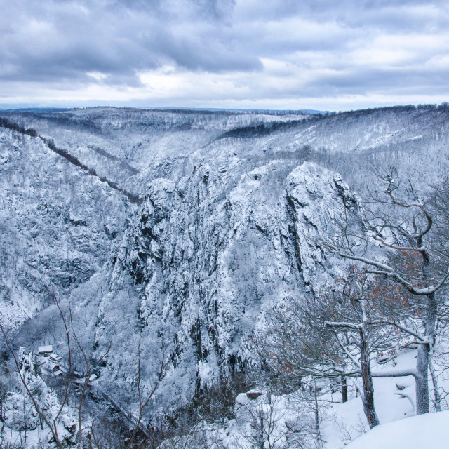 """Amazing Harz In Winter"" stock image"