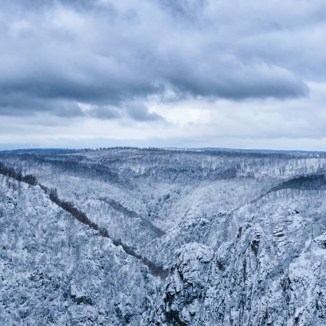 """Harz In Winter Mood"" stock image"