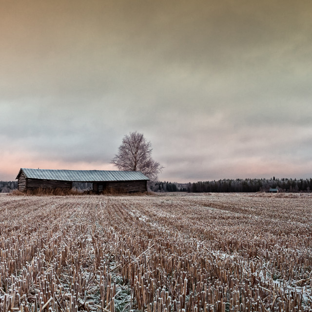 """""""Old Barn At The End Of The Fields"""" stock image"""