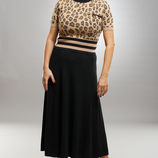 """Businesswoman in retro dress"" stock image"