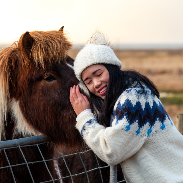 """Woman cuddling with Icelandic horse on Iceland road trip"" stock image"