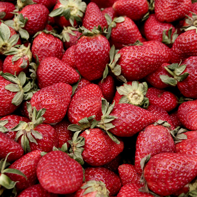 """""""A pile of fresh strawberries,"""" stock image"""
