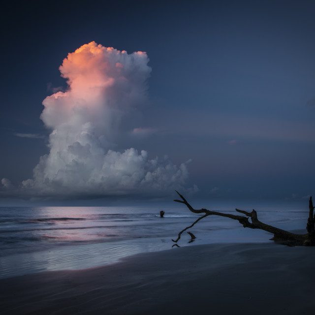 """Bull Island Sunrise"" stock image"
