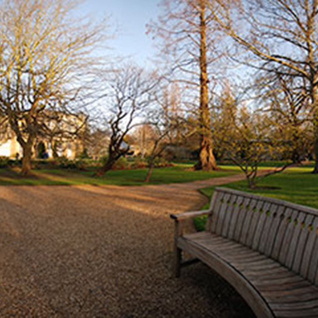 """Oxford University Gardens"" stock image"