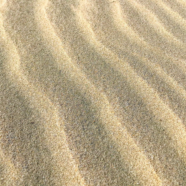 """""""Sand Background Texture"""" stock image"""