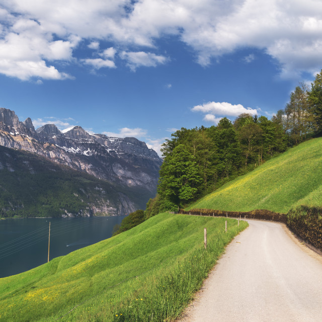 """European summer landscape with Alps and lake"" stock image"