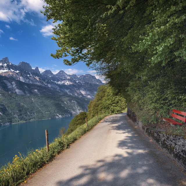 """Road on lakeshore and the Alps mountains"" stock image"