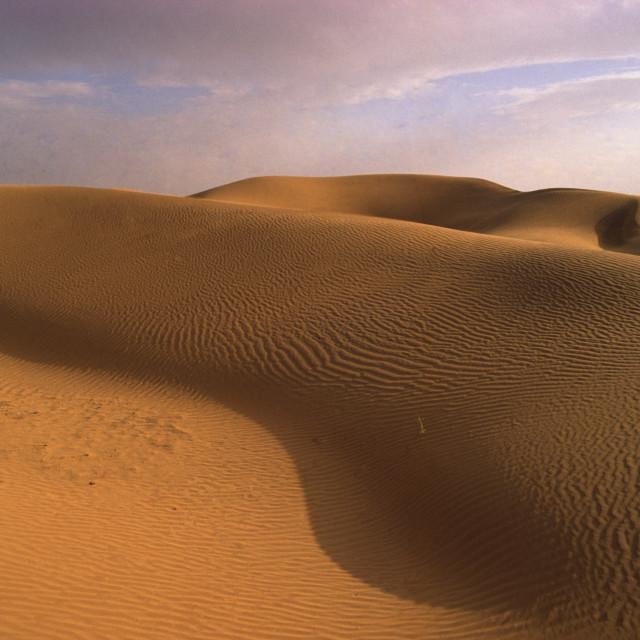 """""""Thar Desert Rajastan India Sand dunes gradually take over the part fertile..."""" stock image"""