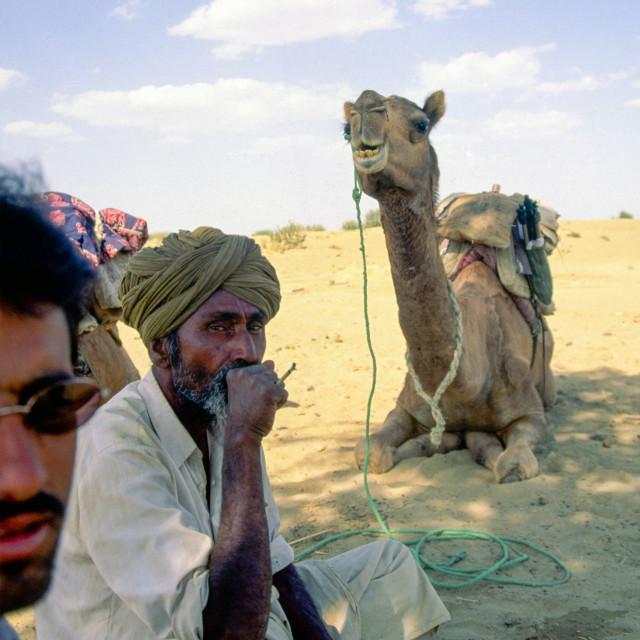 """THAR DESERT INDIA In the heat of the day, shepherds rest in the shade of a tree"" stock image"