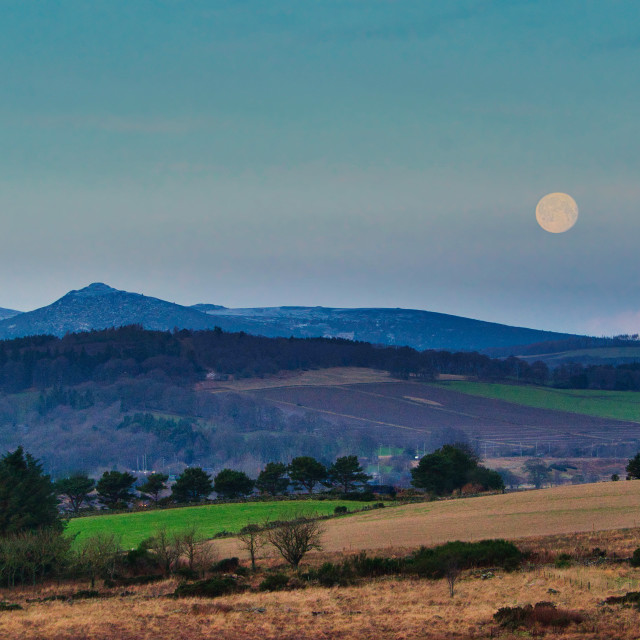 """Moon over Bennachie"" stock image"