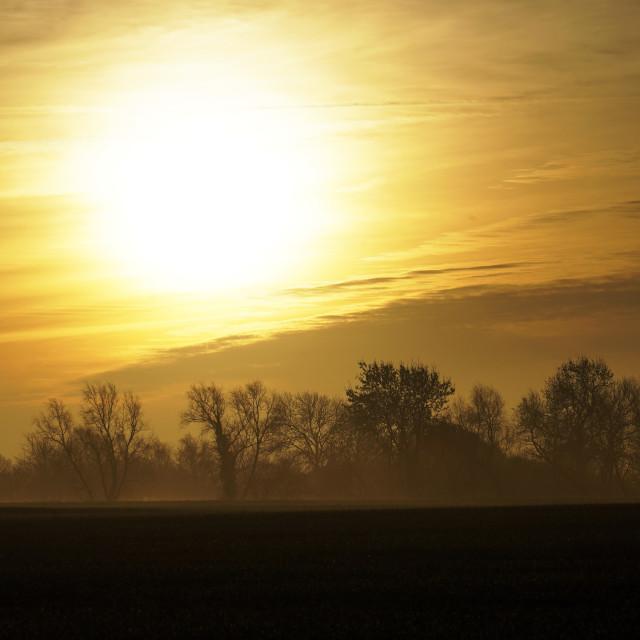 """""""Golden Sunrise"""" stock image"""