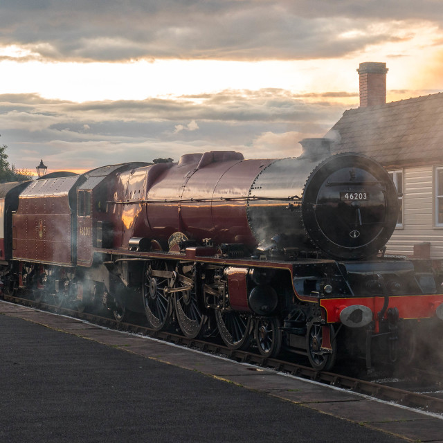 """""""No. 46203 - Princess Margaret Rose"""" stock image"""