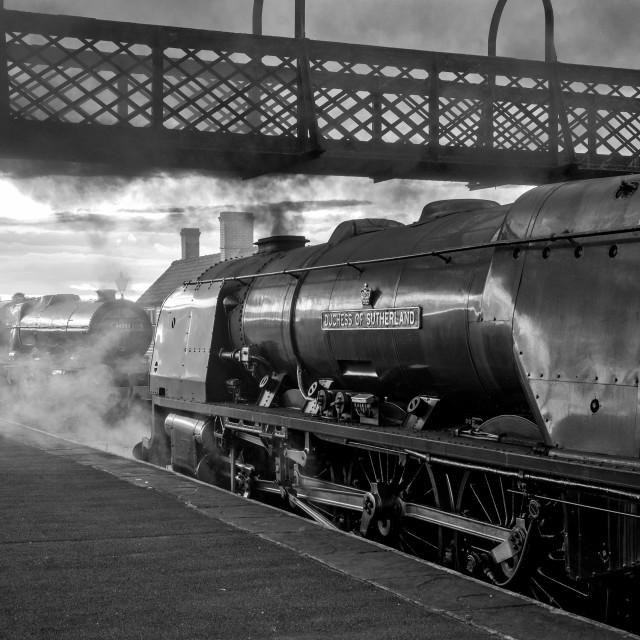 """""""No. 46233 - Duchess of Sutherland"""" stock image"""
