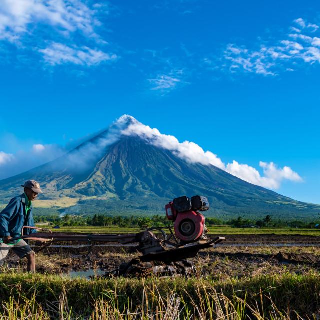"""Mayon Volcano"" stock image"