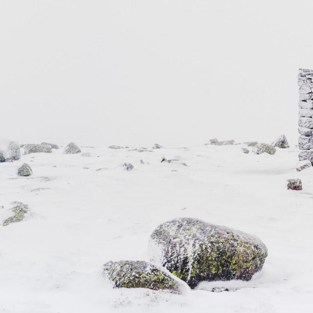 """Norwegian snowfall"" stock image"