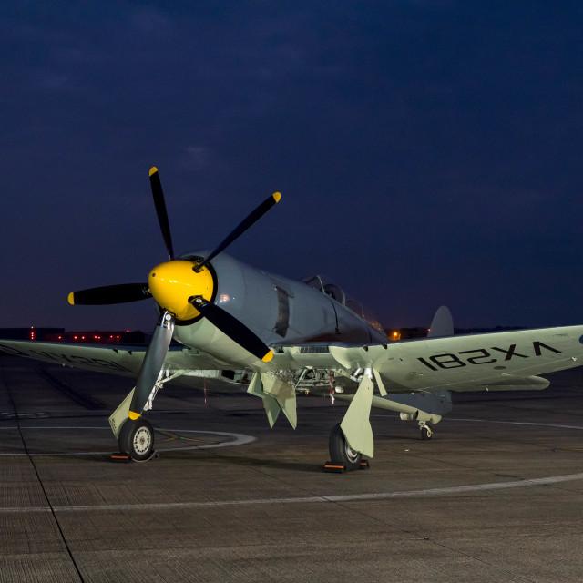 """Sea Fury"" stock image"